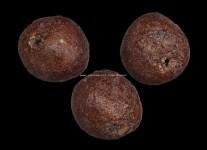 ลูกอมเนื้อผงพุทธคุณทาชันยาเรือ (ขนาด 1.5 ซม.) หลวงปู่ดู่วัดสะแก