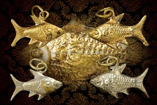 ปลาพ่อจงคู่ที่  2   สวยๆ